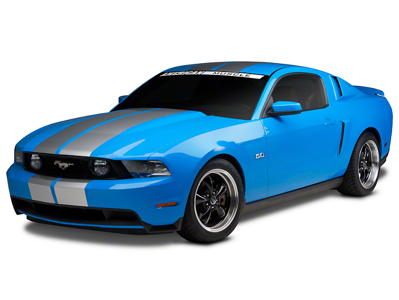 Silver GT500 Style Stripes - 10 in. (79-17 All)