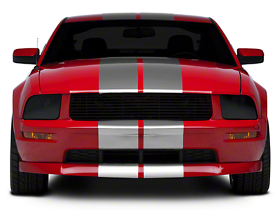 Silver GT500 Style Stripes - 10 in. (05-14 All)