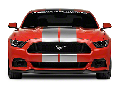 Silver GT500 Style Stripes - 10 in. (15-17 All)