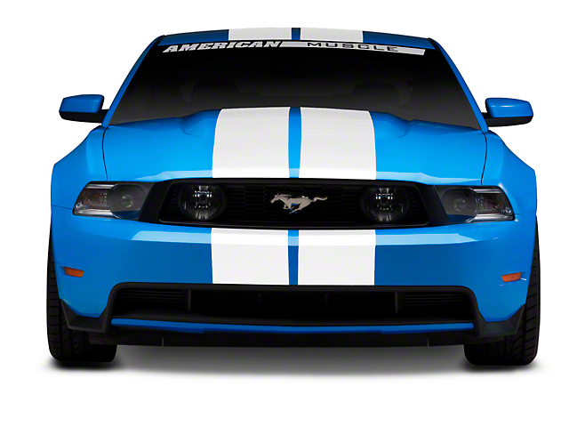 White GT500 Style Stripes - 10 in. (79-16 All)