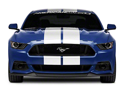 White GT500 Style Stripes - 10 in. (15-16 All)