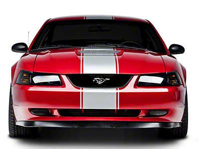 Matte Black Super Snake Style Stripe Kit (94-04 All)