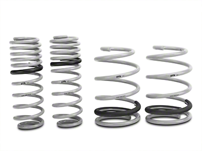RTR Tactical Performance Lowering Springs - Coupe (05-14 GT, V6)