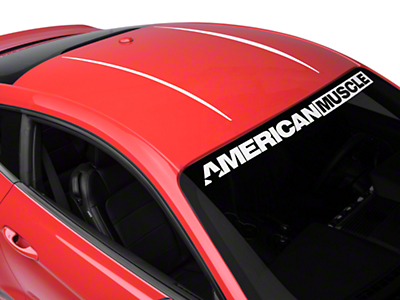 Roof Accent Stripes - White (15-17 All)