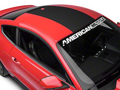 Roof Panel Decal - Matte Black (15-16 All)
