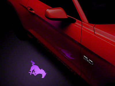 Side View Mirror Puddle Lamp Lens Tint - Purple (13-16 All)