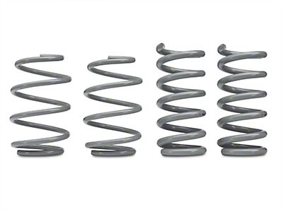RTR Tactical Performance Lowering Springs - Fastback (15-17 GT)