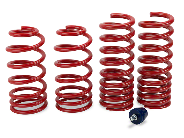 H&R Race Springs - Coupe (79-04 GT, V6, Mach 1; 93-98 Cobra)