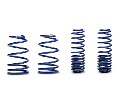 Ford Racing Lowering Springs - Coupe (07-12 GT500)