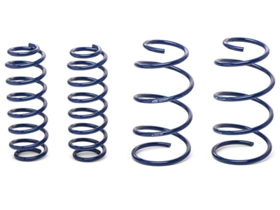 Ford Racing 2013 Cobra Jet Drag Spring Kit (05-14 GT, GT500)