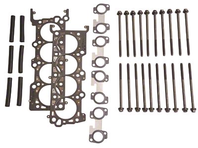 Ford Racing SOHC 2V 4.6L Head Changing Kit (96-04 GT)