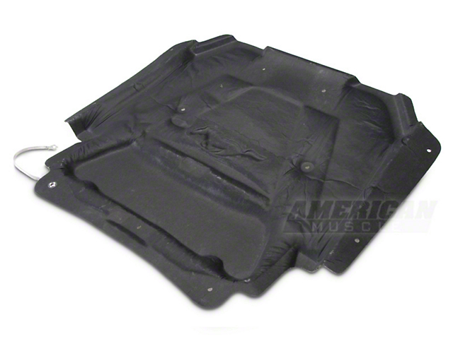 Ford Racing OEM Hood Insulation Liner (99-04 GT, V6)