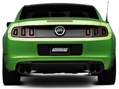 Ford Racing Shelby GT500 Rear Valance (13-14 All)