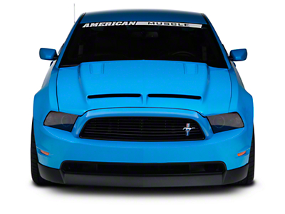 Cervinis Ram Air Type IV Hood - Unpainted (13-14 GT, V6)