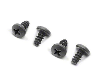 License Plate Light Mounting Screw Kit (79-93 All)