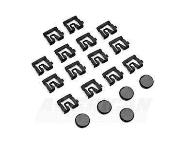 Rear Window Molding Clip Kit - Coupe (79-93 All)