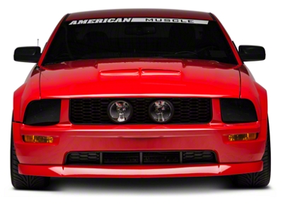 GT500 Style Ram Air Hood - Unpainted (05-09 GT, V6)