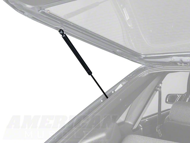 Hatch Support Strut - Left Hand/Right Hand (79-93 All)
