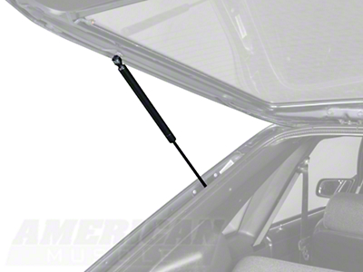 Hatch Support Strut - LH/RH (79-93 All)