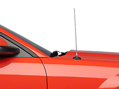 Fixed Chrome Antenna - 14 in. (05-09 All)
