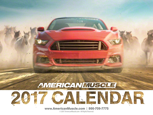 AM 2017 Calendar