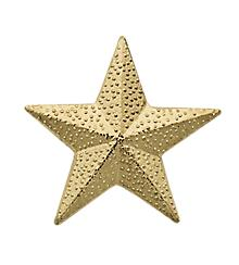 Star Sport Award Pin
