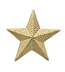 Star Sport Award Pin