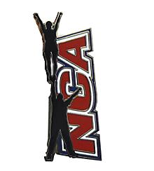 NCA Partner Stunt Awesome Pin