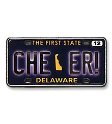Delaware State Pin