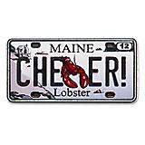Maine State Pin