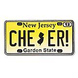 New Jersey State Pin