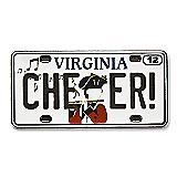 Virginia State Pin