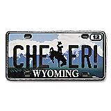 Wyoming State Pin