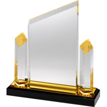 "7 x 8"" Sleek and Slender Diamond Lucite Award"