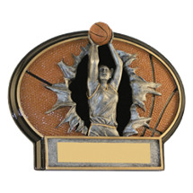 "Basketball Trophy - 6 x 4 1/2"" Female Basketball 3D Resin Trophy"