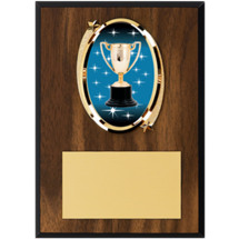 "5 x 7"" Oval Achievement Trophy Emblem Plaque"