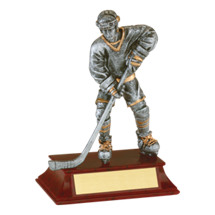 "Hockey Trophy - Male - 6"" Resin Trophy"