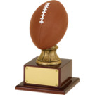 "15 1/2"" Resin Football Trophy"