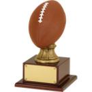 "15 1/2"" Resin Football Trophy"