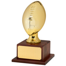 "15 1/2"" Gold Finish Football Trophy"