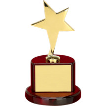 "6 3/4 x 7"" Star Trophy"
