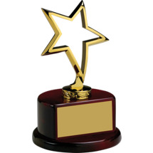 "4 x 6 1/2"" Outlined Metal Star Trophy"