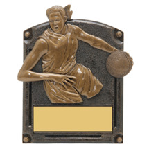 "Basketball Trophy - Female - 5 x 6 1/2"" 3D Shadow Award"