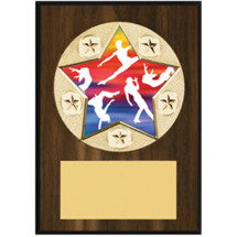 "Dance Plaque - 5 x 7"" Star Emblem Plaque"