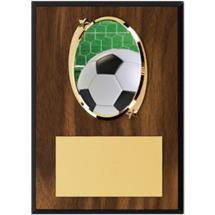 "Soccer Plaque - 5 x 7"" Oval Emblem Plaque"