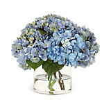 Diane James Blue Hydrangea Arrangement