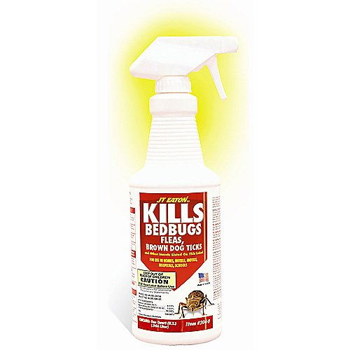 Kills Bedbugs Oil-Based Spray
