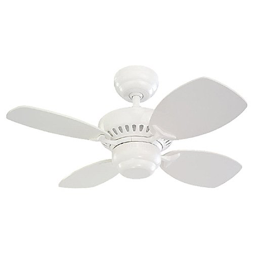 White Flush Mount Indoor 28 Inch Ceiling Fan