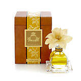Agraria Golden Casis Petite Reed Diffuser