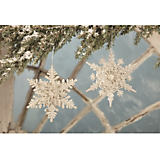 Bethany Lowe Designs Platinume Glitter Snowflake Ornaments - Set of 2